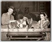 John Farrow, James Mason, and Patricia Medina with Koalas that were flown to the US for the movie  Botany Bay
